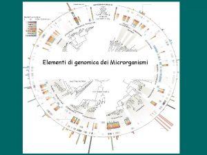 Elementi di genomica dei Microrganismi Applications of Bioinformatics