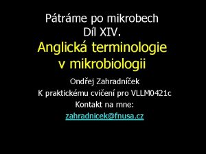 Ptrme po mikrobech Dl XIV Anglick terminologie v