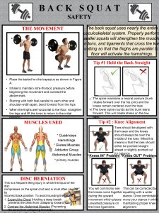 BACK SQUAT SAFETY THE MOVEMENT The back squat