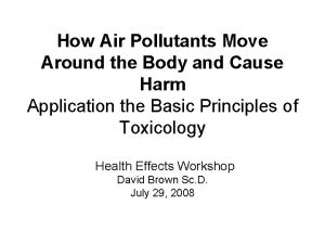 How Air Pollutants Move Around the Body and
