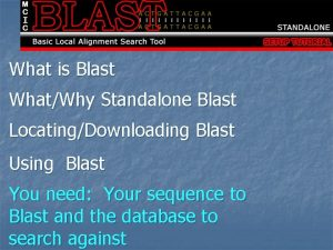 What is Blast WhatWhy Standalone Blast LocatingDownloading Blast