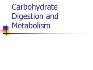 Carbohydrate Digestion and Metabolism Overview of Carbohydrate Digestion