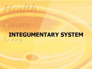 INTEGUMENTARY SYSTEM Structure and Function Integumentary system is