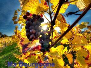 Ma Bourgogne Nos costumes traditionnels Terroir de Bourgogne