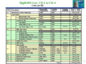 Big BOSS Cost CD1 to CD4 Costs are