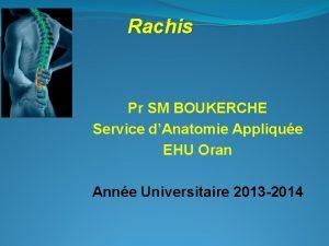 Rachis Pr SM BOUKERCHE Service dAnatomie Applique EHU