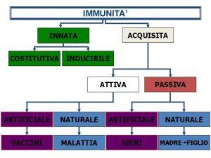 IMMUNITA ACQUISITA INNATA COSTITUTIVA INDUCIBILE ATTIVA PASSIVA ARTIFICIALE