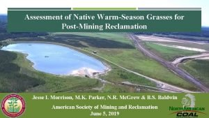 Assessment of Native WarmSeason Grasses for PostMining Reclamation