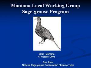 Montana Local Working Group Sagegrouse Program Dillon Montana