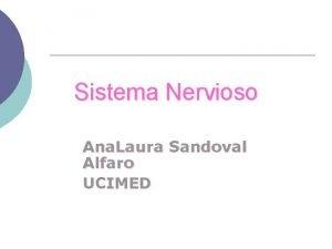 Sistema Nervioso Ana Laura Sandoval Alfaro UCIMED Sistema