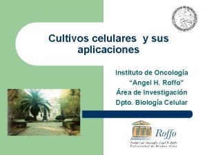 Cultivos celulares y sus aplicaciones Instituto de Oncologa