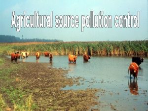 Main agricultural pollution sources in Bulgaria n storage