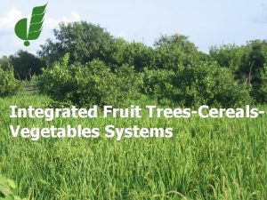 Integrated Fruit TreesCereals Vegetables Systems Fruit and vegetables