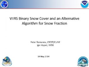 VIIRS Binary Snow Cover and an Alternative Algorithm