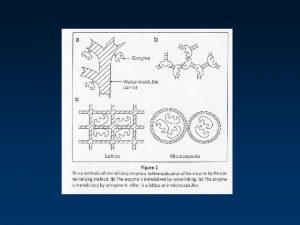 www rohmhaas comionexchange Ejemplos de procesos enzimticos industriales