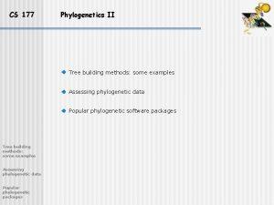 CS 177 Phylogenetics II Tree building methods some