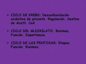 CICLO DE KREBS Descarboxilacin oxidativa de piruvato Regulacin