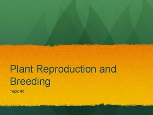 Plant Reproduction and Breeding Topic 3 Selective Breeding