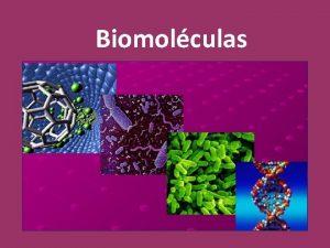 Biomolculas Biomolculas as molculas da vida Nenhuma unidade