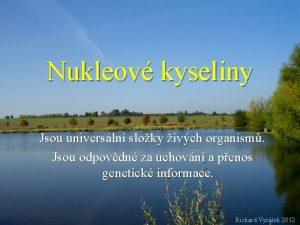 Nukleov kyseliny Jsou universln sloky ivch organism Jsou