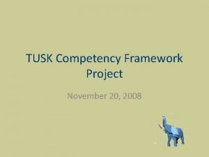 TUSK Competency Framework Project November 20 2008 Project