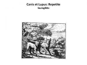 Canis et Lupus Repetite lauragibbs Canis et Lupus
