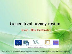 Generativn orgny rostlin Kvt flos kvtenstv Tento projekt