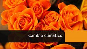 Cambio climtico Definiciones Cambio climtico Efecto invernadero Huella