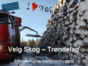 Velg Skog Trndelag Rekruttering og merkevarebygging Bakgrunn Rekrutteringsutfordringer