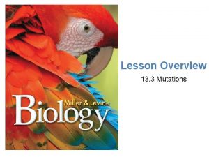 Lesson Overview Mutations Lesson Overview 13 3 Mutations