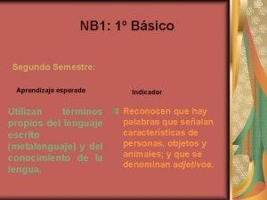 NB 1 1 Bsico Segundo Semestre Aprendizaje esperado