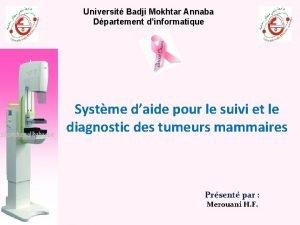 Universit Badji Mokhtar Annaba Dpartement dinformatique Systme daide