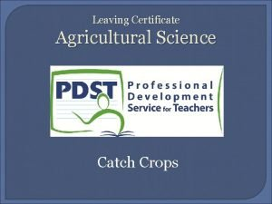 Leaving Certificate Agricultural Science Catch Crops CATCH CROPS