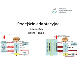 Podejcie adaptacyjne Jolanta Sala Halina Taska Metafory procesu