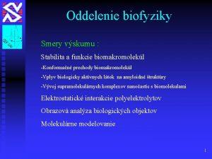 Oddelenie biofyziky Smery vskumu Stabilita a funkcie biomakromolekl