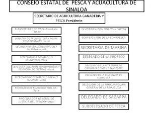 CONSEJO ESTATAL DE PESCA Y ACUACULTURA DE SINALOA