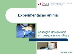 Mestrado Integrado em Medicina Veterinria Disciplina de Deontologia