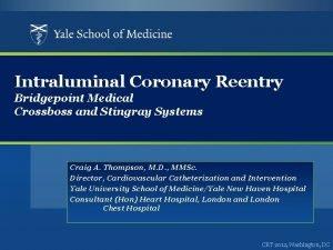 Intraluminal Coronary Reentry Bridgepoint Medical Crossboss and Stingray