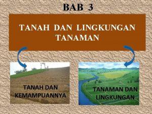 BAB 3 TANAH DAN LINGKUNGAN TANAMAN TANAH DAN