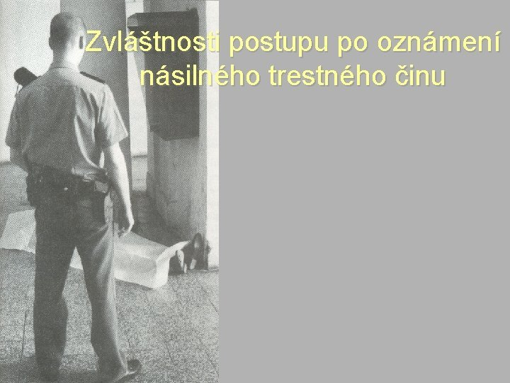 Zvltnosti postupu po oznmen nsilnho trestnho inu Provovn