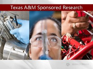 Texas AM Sponsored Research Services Texas AM Sponsored