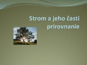 Strom a jeho asti prirovnanie Ak zkladn asti