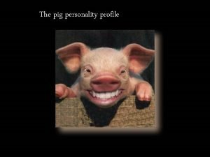 The pig personality profile The Pig Personality Profile