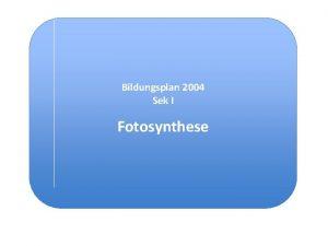 Bildungsplan 2004 Sek I Fotosynthese Bezug zu den