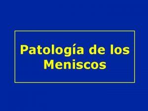 Patologa de los Meniscos ANATOMIA Vista interna Vista