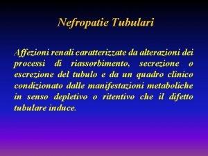 Nefropatie Tubulari Affezioni renali caratterizzate da alterazioni dei