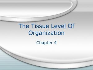 The Tissue Level Of Organization Chapter 4 Introduction