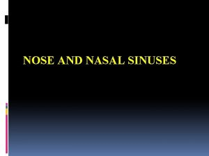 NOSE AND NASAL SINUSES Nose Is the part