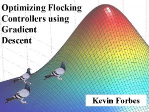Optimizing Flocking Controllers using Gradient Descent Kevin Forbes
