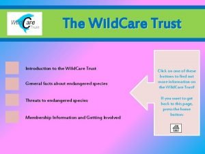The Wild Care Trust Introduction to the Wild